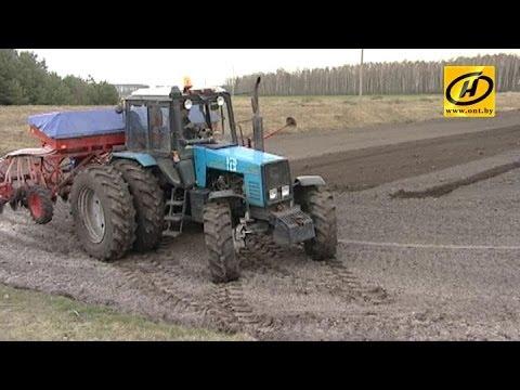 видео: Как хозяйство с самым низким показателем плодородности выращивает самый большой урожай в Беларуси?