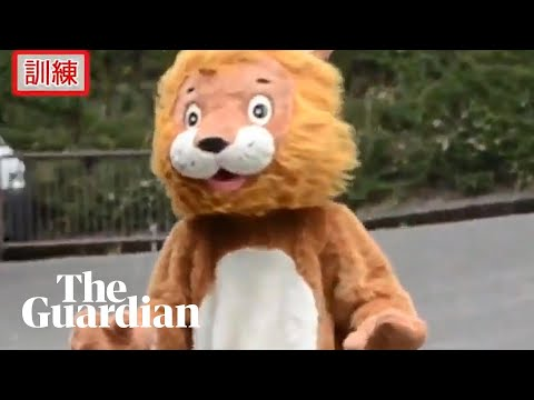 Alabama - Escaped 'Lion' in Japan Breaks The Internet with All the Jokes