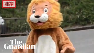 Footage of 'lion' escaping from Japanese zoo goes viral