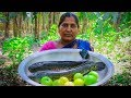 Fish & Tomato Cooking: Striped Snakehead Fish & Tomato Curry Recipe in Village | Village Food Life