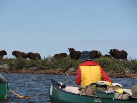 Canoe Arctic Inc. Discover North America's Last Great Wilderness