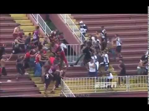 Brazilian Soccer Stadium Fights Compilation