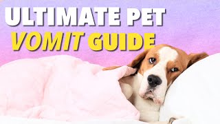 Ultimate Vomit Color Guide for Dogs | Ultimate Pet Nutrition - Dog Health Tips