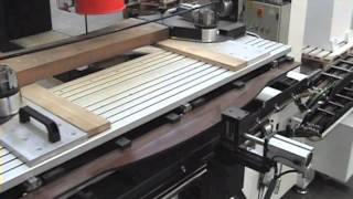 Bacci Cutting Division - Automatic Copying Band Saw Model Duplex