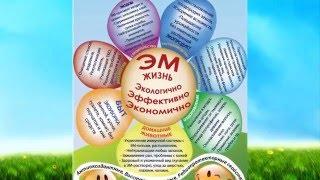 ЭМ-СПРЕЙ - супер средство для здорового быта