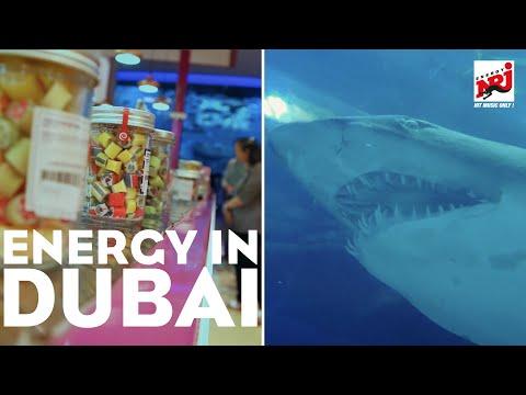 Emirates bringt ENERGY nach Dubai | Folge 4 | Dubai Mall & Aquarium