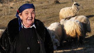 Cijenu Aninih ovaca određuju kupci