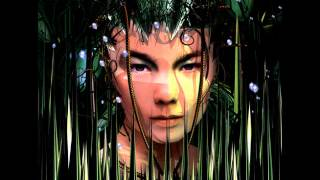 Björk - Bachelorette (Mark Bell Blue Remix)