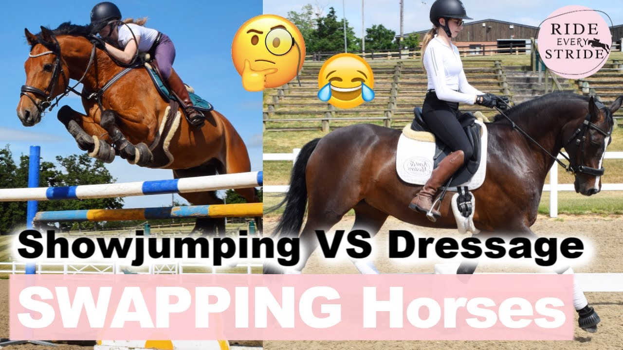 SWAPPING HORSES with my DRESSAGE Friend!! | *ZERO CONTROL* when jumping | Ride Every Stride