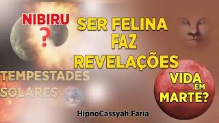 HIPNOSE - SER FELINA REVELA SOBRE NIBIRU - TEMPESTADES SOLARES #81