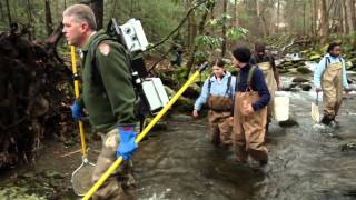 Student Conservation Association - NPS Academy in the Great Smoky Mountains