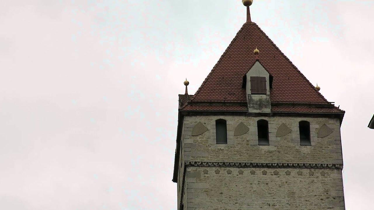 Rathausturm Wanderfalken