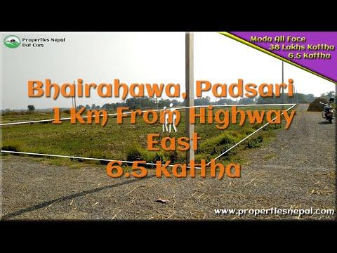 Bhairahawa Padsari   6.5 Kattha Jagga   38 Lakhs Kattha   Properties Nepal      Real Estate