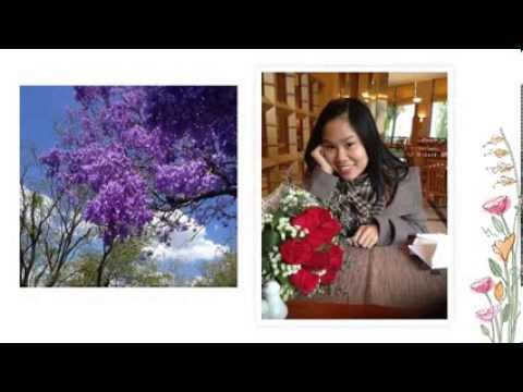 Happy Vietnamese Women's Day 20-10-