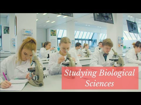 Studying Biological Sciences