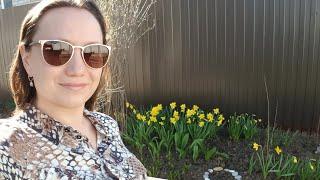 Мои 4 сотки | Посадка винограда | Апрель 2019 Цветы и сорняки❣