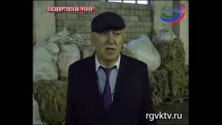 В Дагестане планируют поставить на поток производство шерстяных изделий для военных