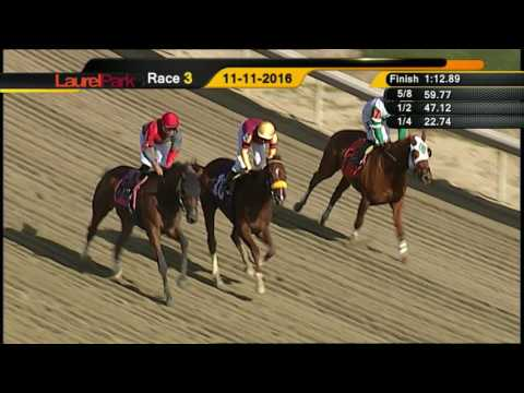 LAUREL PARK REPLAY SHOW 11 11 16