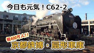 【祝400万人】今日も元気!C62-2・京都鉄道博物館扇形車庫