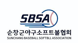20200524 순창군동호인리그 3게임 대상청정원 vs…