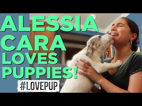 Alessia Cara LOVES Puppies & Talks Family, Music and Jimmy Fallon!