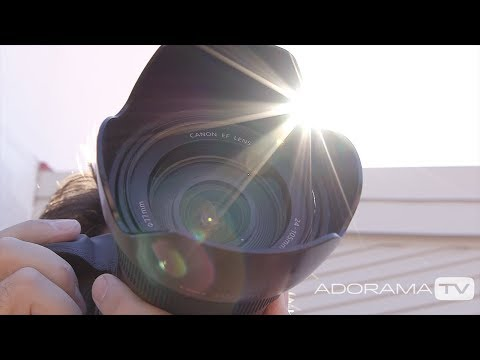 Auto Focus Modes: Two Minute Tips with David Bergman
