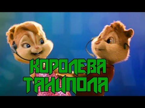 Бурундуки- Королева танцпола Джаро & Ханза
