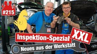 Ein Vogel im Kia!! 😳 Inspektion-Spezial XXL - DAS gehört alles zu einer guten Wartung!
