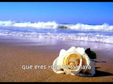 una rosa en la playa de salserin