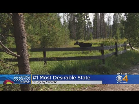 BEARDO - Colorado is the Most Desirable State to move to