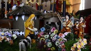 Festival of dolls 2014
