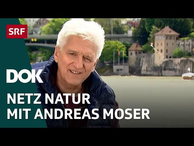 Die letzte Folge NETZ NATUR mit Andreas Moser   Doku   SRF Dok