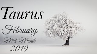 TAURUS MID-MONTH FEB | THEY ARE UNSURE OF HOW THEY FEEL - Taurus Tarot  Love Reading