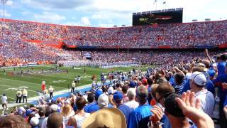 Only Gators Get Out Alive - Gators Coming Out Of The Tunnel