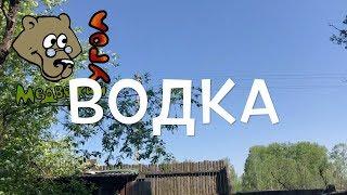 ВОДКА (Школа травоведения)