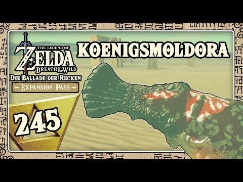 THE LEGEND OF ZELDA BREATH OF THE WILD Part 245: Königsmoldora Battle