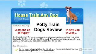 Potty Train Dogs Review | Is Potty Train Dogs Good?