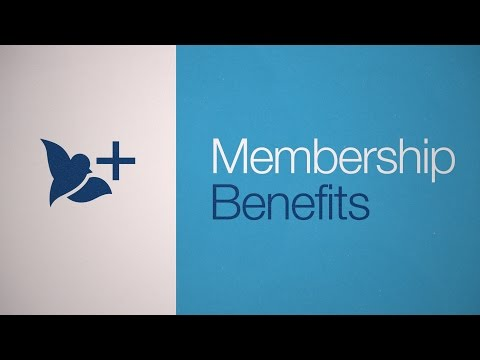 Bluebird By American Express Is A Financial Account With Flexible Features & Tools: Benefits