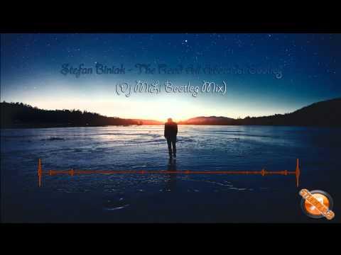 Stefan Biniak - The Read All About It Bootleg (Dj MiLi Bootleg Mix)