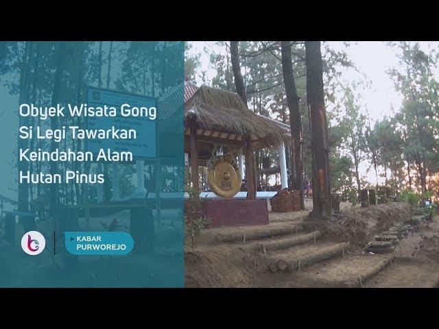 Obyek Wisata Gong Si Legi Tawarkan Keindahan Alam Hutan Pinus