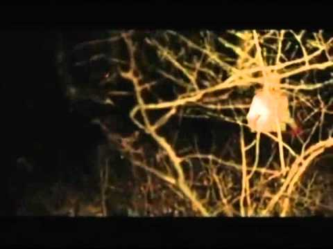 the buried secret of m night shyamalan part 8 youtube