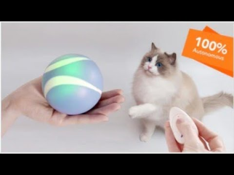 Luerpci: Smart & Interactive Ball That Plays With Your Pet