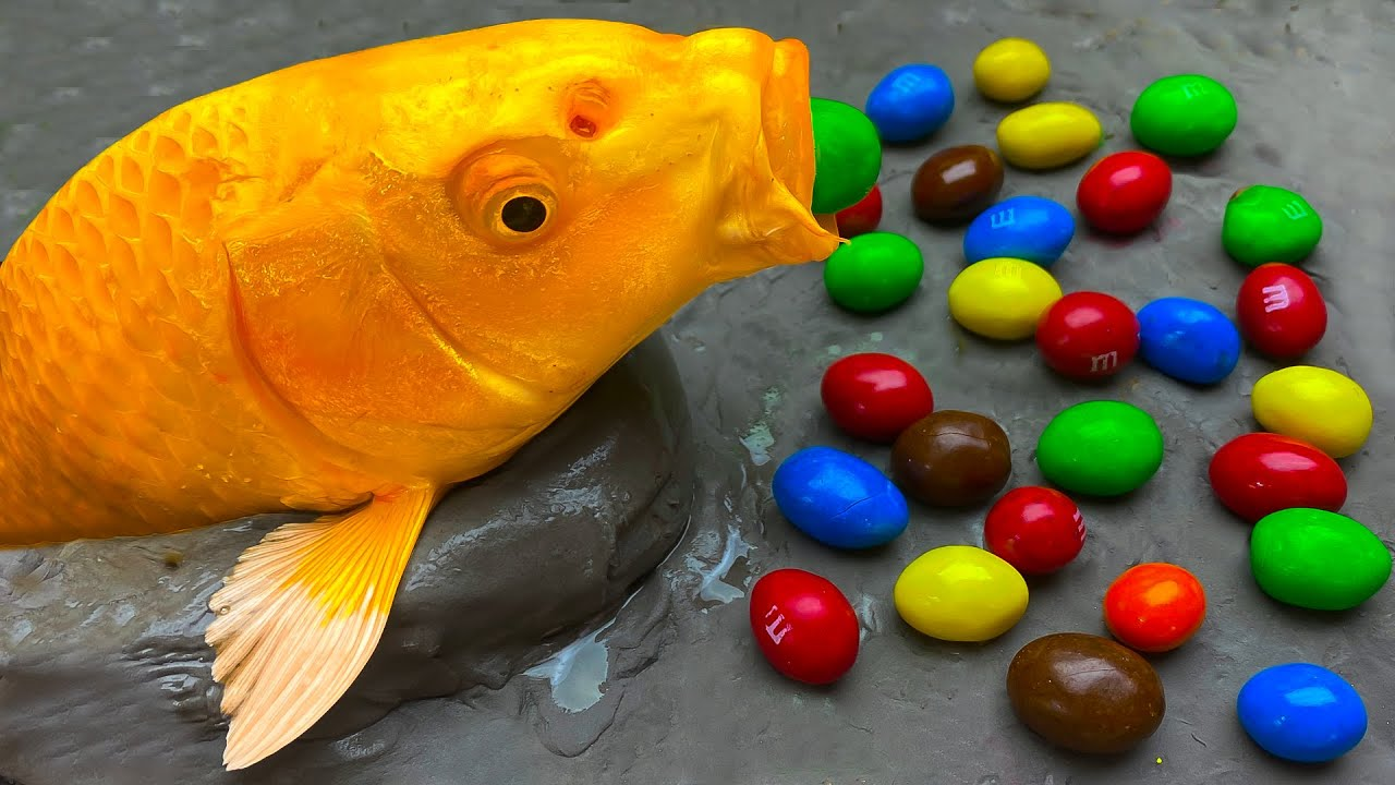 Stopmotion Fish - Golden Carp Candy, Catfish Sushi From Insects Mukbang IRL Recipe 4K | Cuckoo