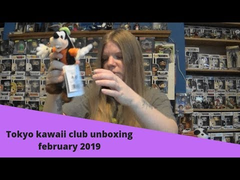 Tokyo kawaii club unboxing february 2019