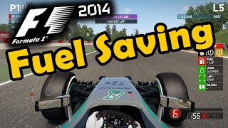 F1 2014 Gameplay: How to Save Fuel Effectively
