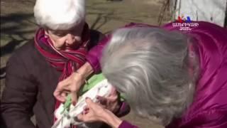 SHORT VIDEO Սվիտերներ հավերի համար