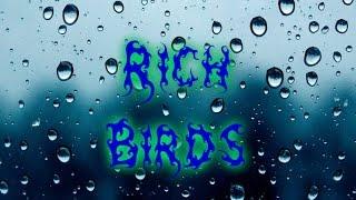 Заработок в интернете #1 Rich Birds