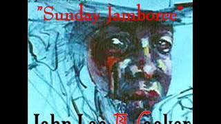 John Lee Hooker - Chicago Blues Festival, 1990