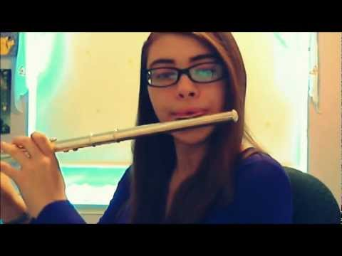 Taylor Swift - 22 - Flute Cover