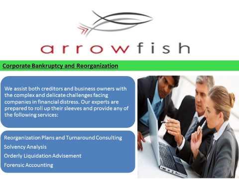 Arrowfish Consulting - Economic Damages & Business Valuation Lost Profits Expert